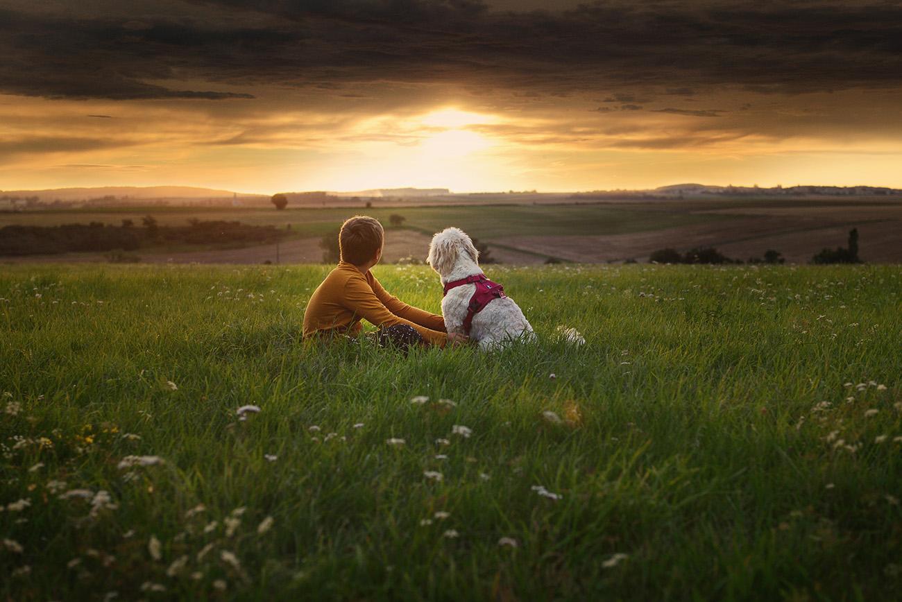 Kinderfotos natürlich, Fotoshooting mit Hund