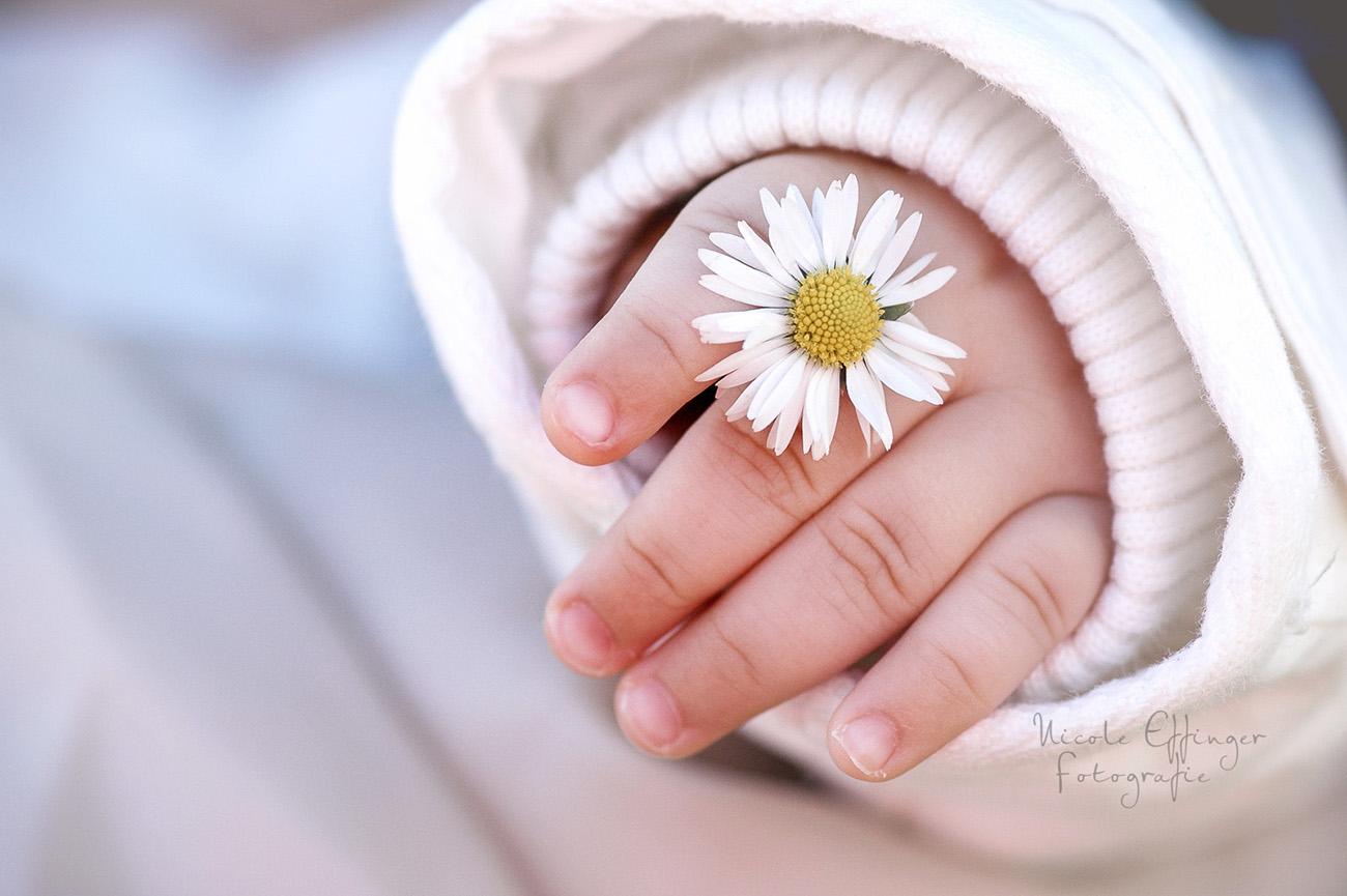 Kinderfotografin Wetteraukreis, Babyfotos im Taunus